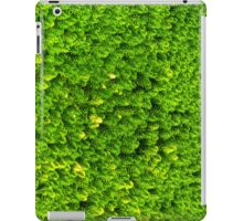Green Boom iPad Case/Skin