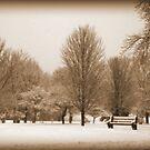 A Winter's Scene by kkphoto1