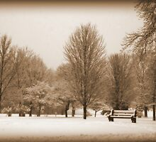 A Winter's Scene by kkphoto1