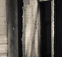 Through The Window by Mandy  Harvey