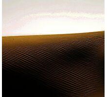 Soussusvlei, Namib Desert , Namibia Photographic Print