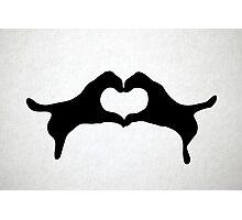 Rorschach Heart Photographic Print