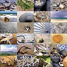 Beach Collage by Michelle Ricketts