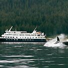 Un-Cruising Alaska by Jocelyn Pride