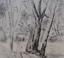 Tarriaro Tree Scene near Narrabri by © Jennifer Korteland