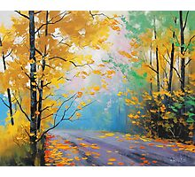 Misty Fall Road Photographic Print