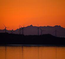 Wind turbines  by raymona pooler