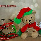 Merry Christmas by Lynda Heins