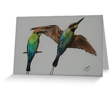 Rainbow Bee Eater - inktense Greeting Card