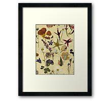 Victoriana - Summer Zoom Framed Print