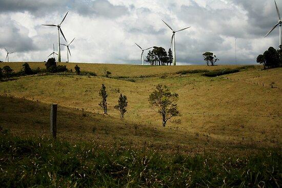 Windy Hill Windmills by Vanessa Barklay