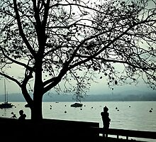 Lake Zurich, Switzerland by Mihaela Limberea