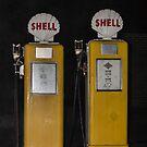 Shells by JEZ22