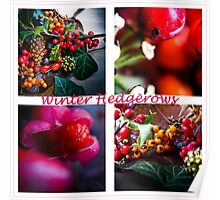 Winter Hedgerows Poster