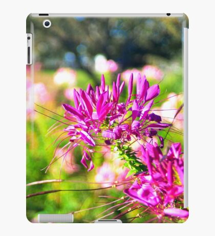 Warm memories~ iPad case iPad Case/Skin