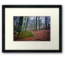 Chevin Forest Park #1 Framed Print