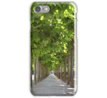 Avenue of Trees, Brussels iPhone Case/Skin