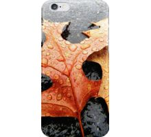 Leaves 01 iPhone Case/Skin