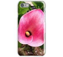Spring Orchid Phone Case and Notebook iPhone Case/Skin