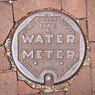Water meter by laurabaker