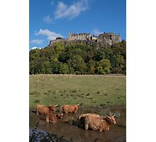 Coo's Below the Castle Photographic Print