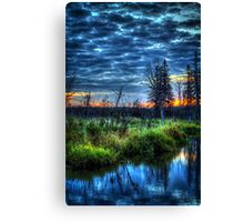 Nature's River in Northern Maine Canvas Print