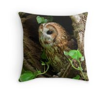 Tawny Owl sitting in old tree Throw Pillow
