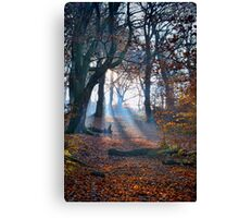 Chevin Forest Park #2 Canvas Print