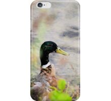 Mallard iPhone Case/Skin