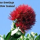xmas card from nz by louise linskill
