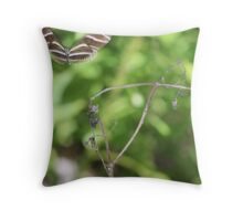 Zebra Longwing Butterfly (Heliconius charitonius) Throw Pillow