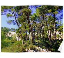 Giant Pines on Les Alpilles Poster