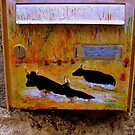 Painted Post Boxes in Provence by Rusty  Gladdish