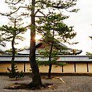 Myoshin-ji Morning by Skye Hohmann