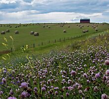 Old Highway in Spring by AudraJS