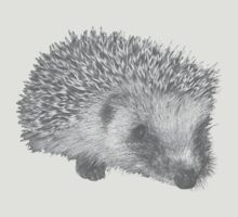 Hedgehog by WAMTEES