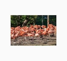 Flock of Flamingos T-Shirt