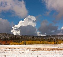 North Rim at Winter by AudraJS