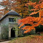 Woodland Cottage by Gary Heald LRPS