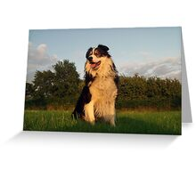 A Dog for All Seasons. Greeting Card