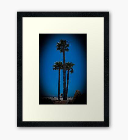 Coronado Giants Framed Print