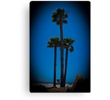 Coronado Giants Canvas Print