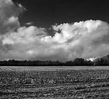 Stubble field by Gary Heald LRPS