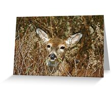 Oh Deer Greeting Card