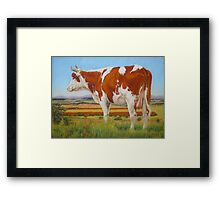 Cow On The Lookout Framed Print