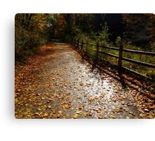 A dusting of muted leaves Canvas Print