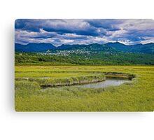 Potter Marsh Alaska Canvas Print