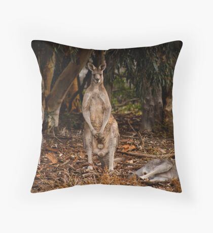 """Grey Kangaroos"" Throw Pillow"