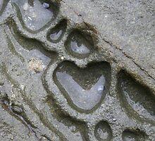 LOVE in Nature - Great Ocean Road, VIC, Australia by naturesart
