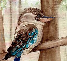 Kookaburra by KeLu